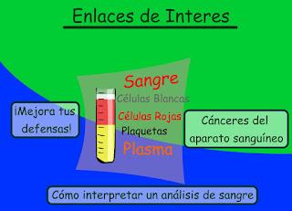 http://www.ceiploreto.es/sugerencias/animaciones/ciencias/sangre[1].swf