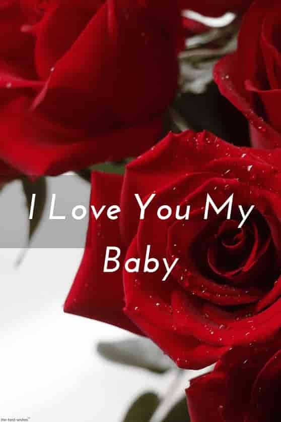 i love you my baby pic with red rose