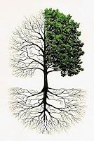 Ağaç dalları ve köklerini gösteren bir ağaç çizimi