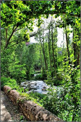 Río Gallo (Virgen De La Hoz, Corduente)