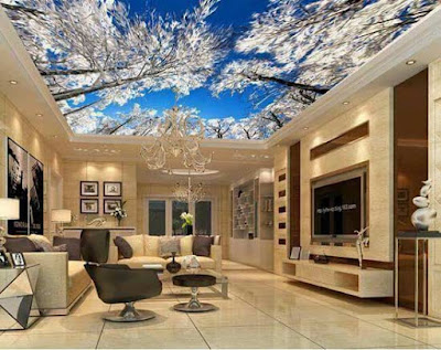 Stretch ceiling,3d stretch ceiling, stretch ceiling DIY, stretch ceiling designs,3d ceiling art for living room
