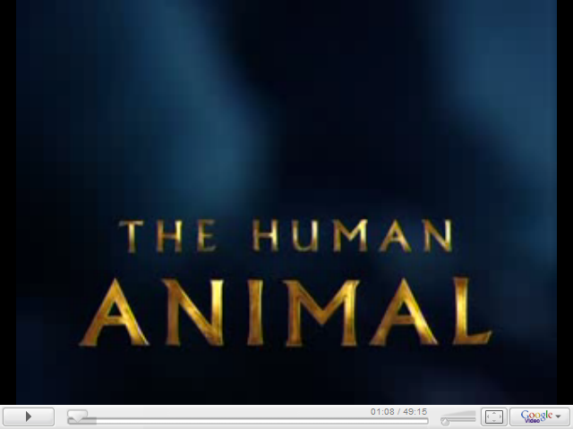 https://www.youtube.com/results?search_query=the+human+animal+bbc