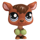 Littlest Pet Shop Large Playset Kangaroo (#682) Pet