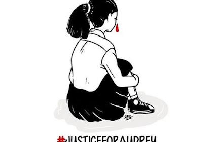 Kasus Audrey Dikeroyok dengan Tangan Kosong Ungkapan dari Polisi