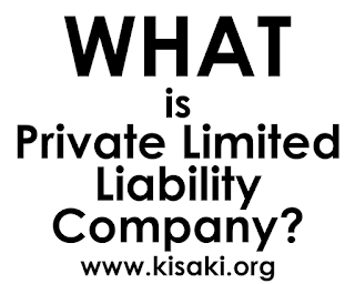 What is a Private Limited Liability Company? - Explained