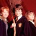Conheça 'Wizardhood', uma versão resumida dos filmes de Harry Potter criada por um fã