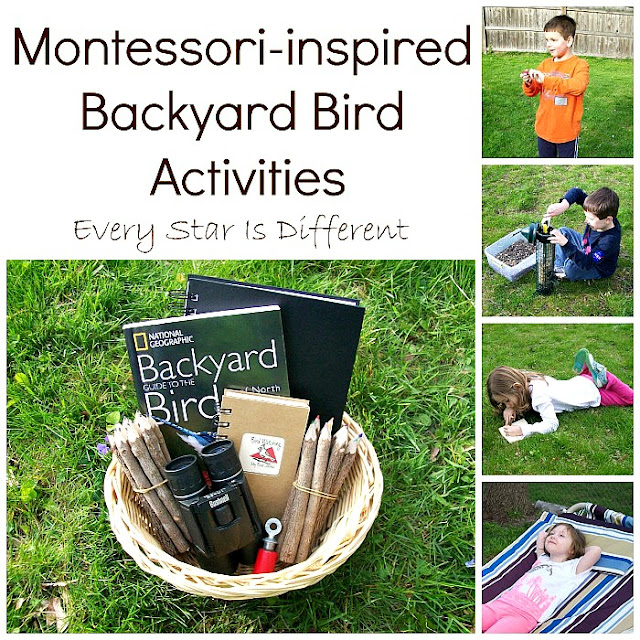Montessori-inspired Backyard Bird Activities
