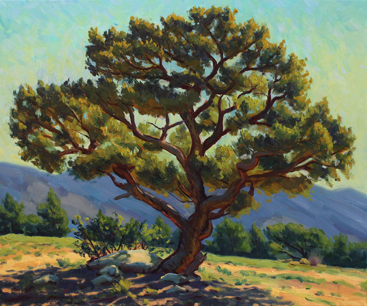 "The Blogged Palette: Pinon Tree ""En Plein Air"""