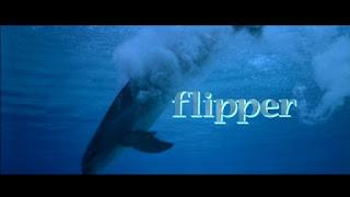 flipper title