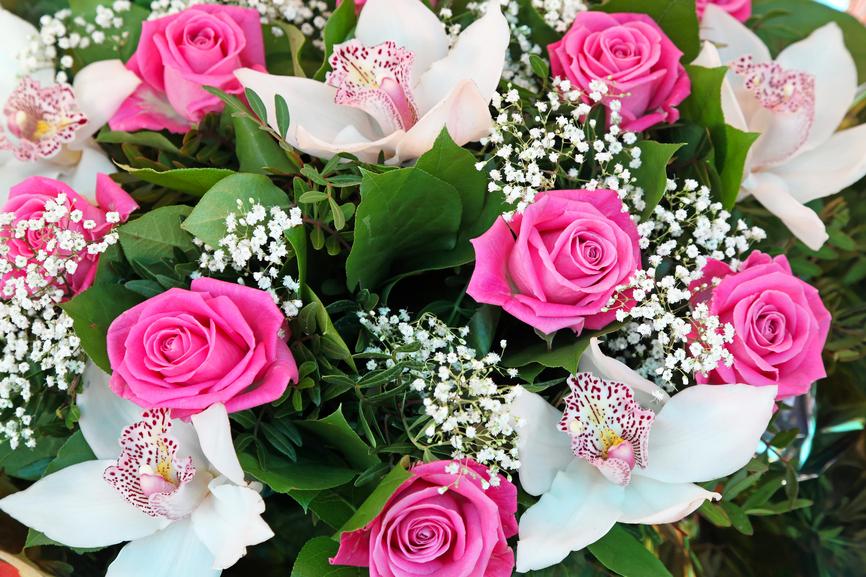 Solo Fondos De Pantalla San Valentin: BANCO DE IMÁGENES: 25 Fotos De Rosas Rojas, Arreglos