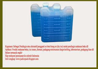 Ice Pack dari Maidaniipancakedurian.com