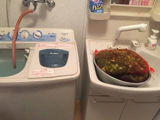 脱水機で、水を切る。