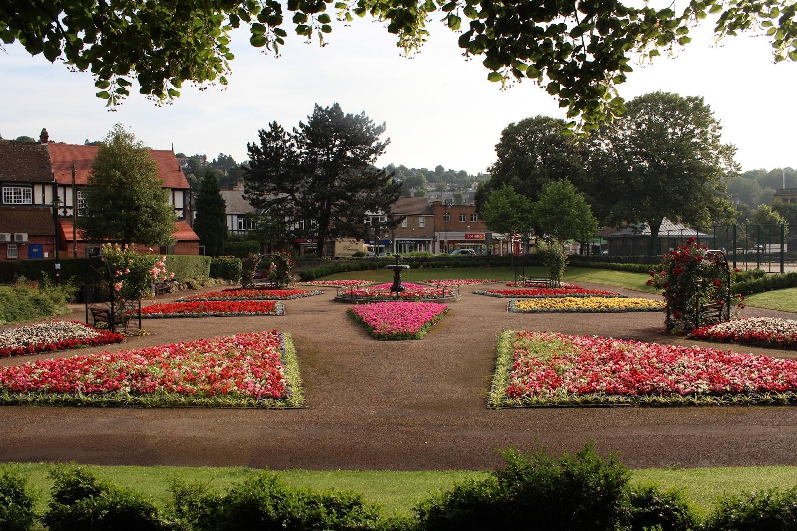 The Inelegant Gardener: Of Bourdieu and begonias