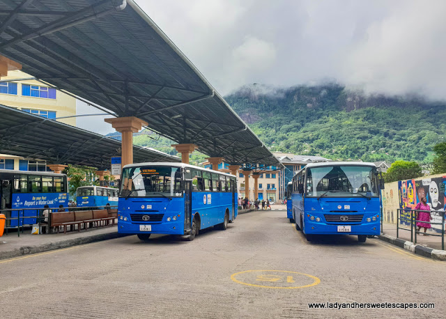 Seychelles blue buses in Victoria Terminus