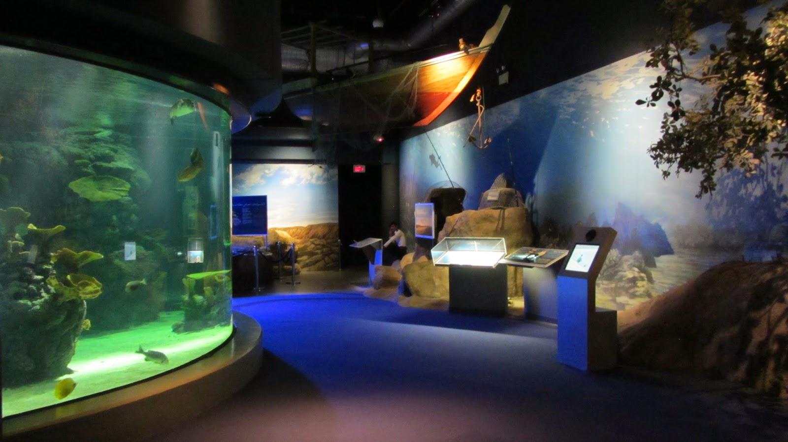 Scitech Al-Khobar Saudi Arabia Our Beautiful Seas Hall blog