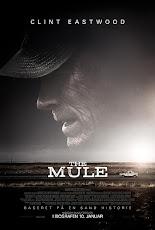 The Mule (2018) เดอะ มิวล์