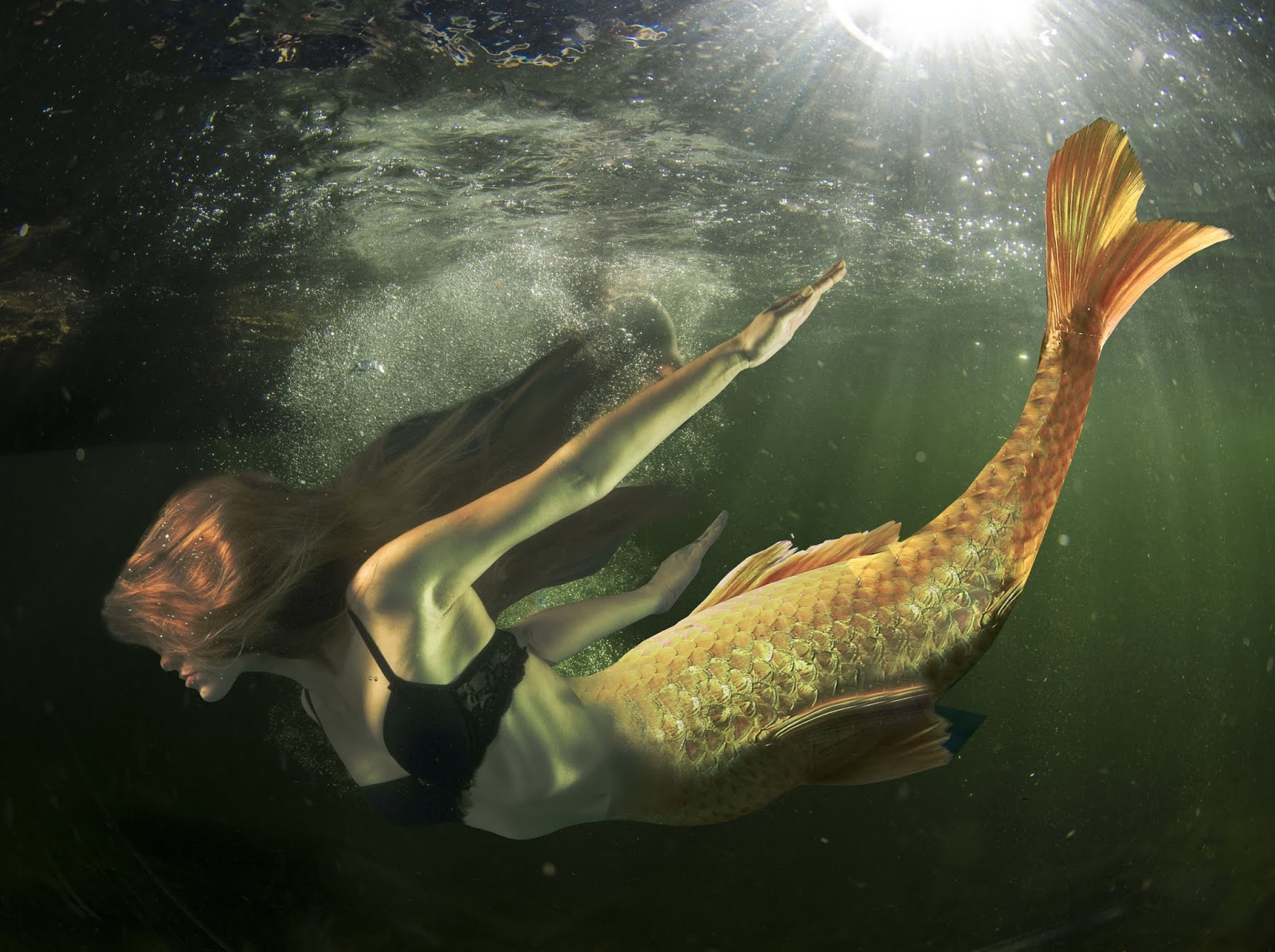 medium resolution of are mermaids real