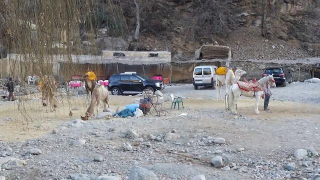 Setti Fatma (Valle del Ourika)