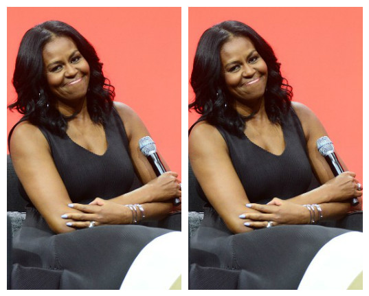Wife of former US President Michelle Obama says she won't run for office