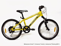 Sepeda Gunung Remaja Wimcycle Roadtech S Rangka Aloi 7 Speed 20 Inci