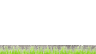 Green grass wall png download
