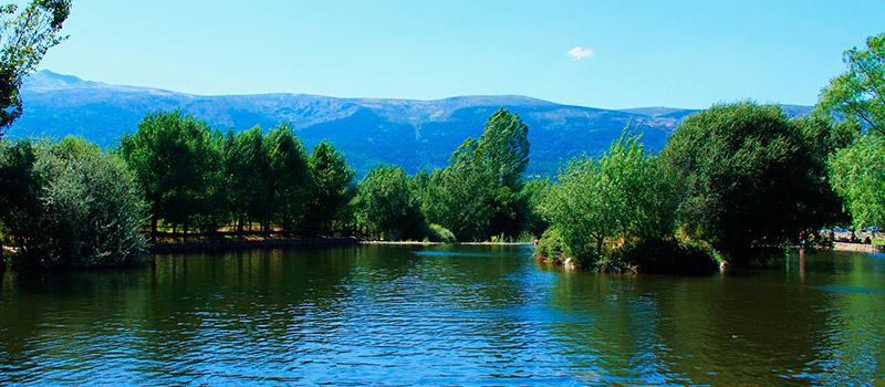 De paseo por madrid ruta por las piscinas naturales de madrid for Piscinas naturales buitrago