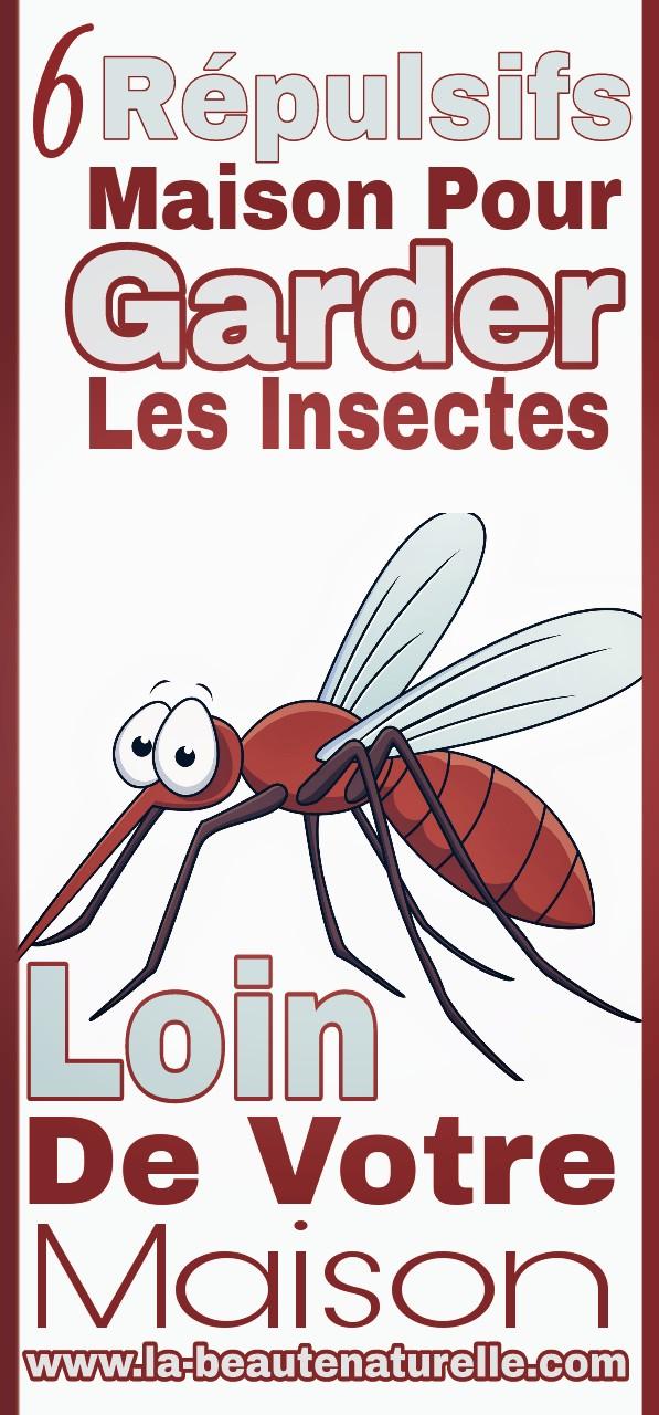 6 répulsifs maison pour garder les insectes loin de votre maison