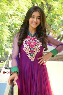 Actress Pooja Jhaveri Latest Stills in Purple Salwar Kameezt at Dwaraka Success Meet  0142.JPG