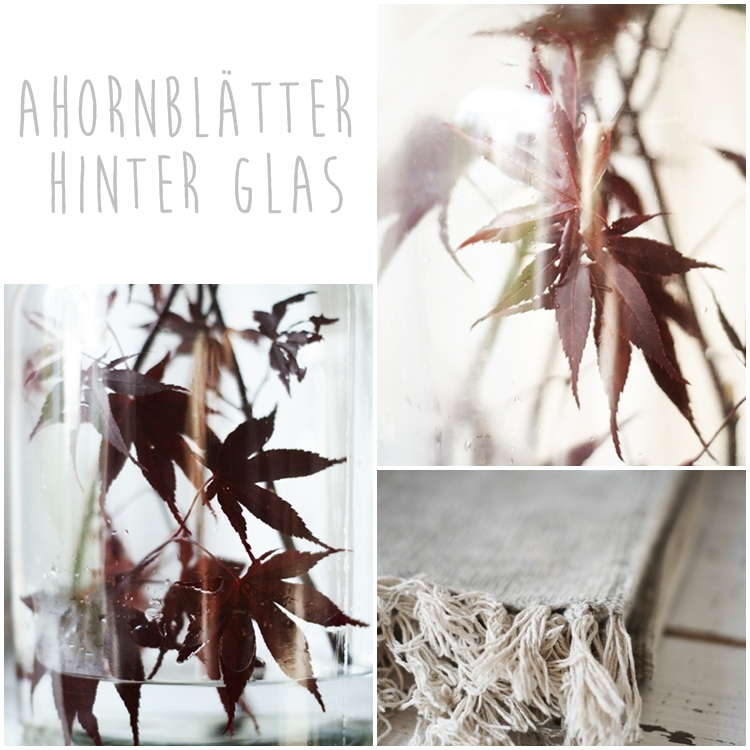 Collage Ahornblätter hinter Glas { by it's me! }