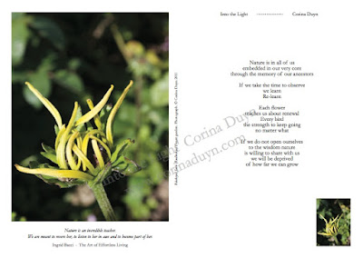 page from Into the Light with image of flower and quote by Ingrid Bacci and Corina Duyn