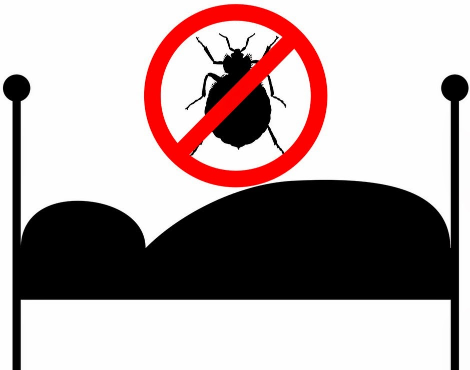 how to kill bed bugs naturally without pesticides