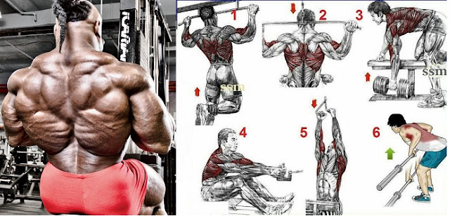 Back growth workout