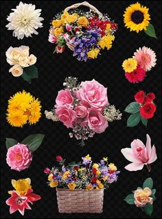 background images flowers