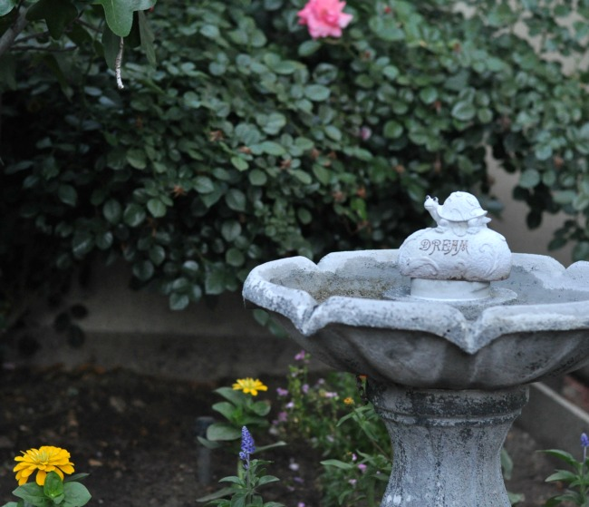 a bird bath in the cottage garden