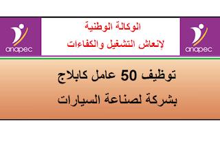 alwadifa-maroc-emploi-public-anapec-cablage