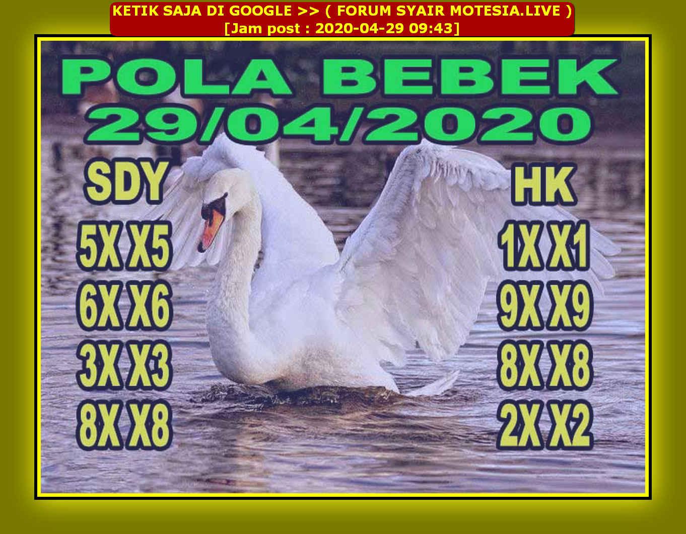 Kode syair Sydney Rabu 29 April 2020 44