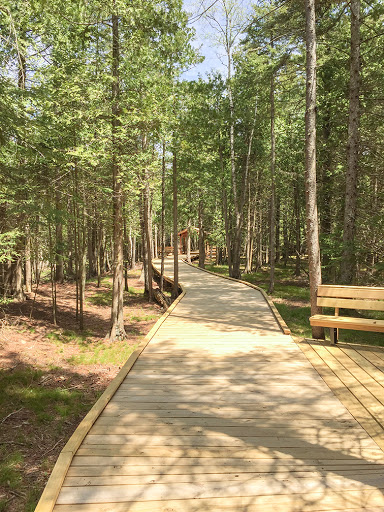 Ridges Sanctuary Boardwalk in Bailey's Harbor Door County WI