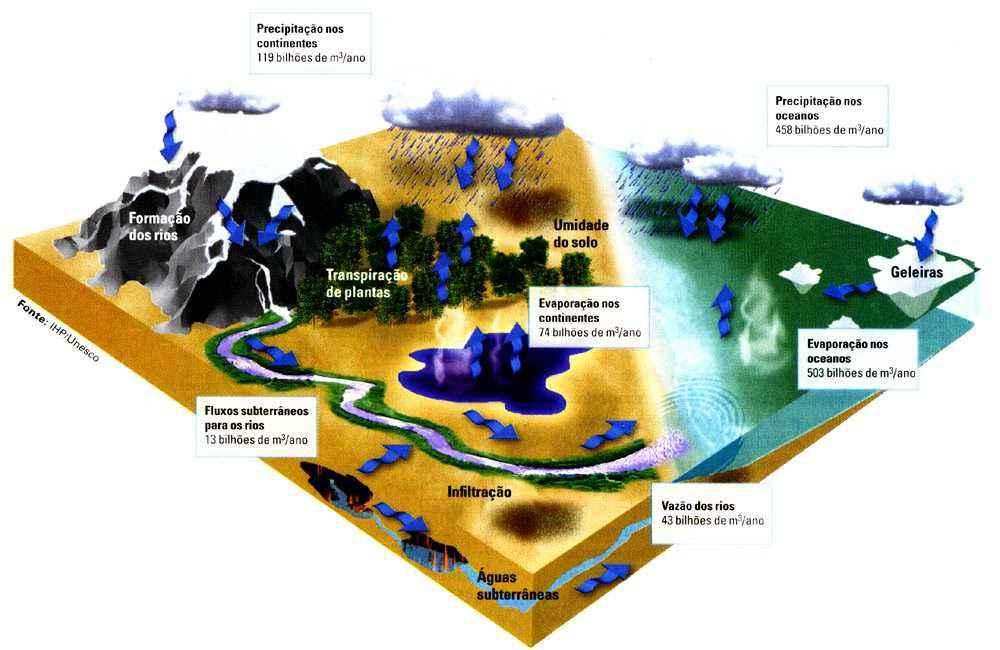 Evapotranspiração, Precipitação e Escoamentos Superficiais no Ciclo Hidrológico