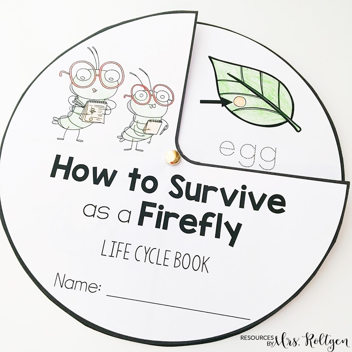 How To Survive As A Firefly Free Book Activities