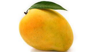 10 Lines On Mango