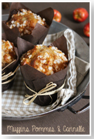 http://moi-gourmande.blogspot.fr/2014/11/muffins-pommes-cannelle.html
