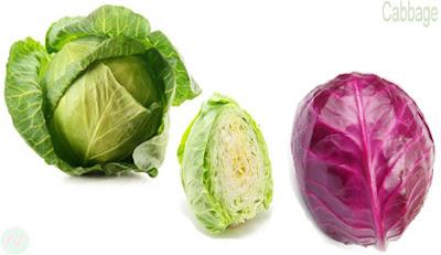 পাতা কপি, Cabbage, الكرنب; 卷心菜; गोभी; cavolo; キャベツ; капуста; repollo; lahana; گوبھی