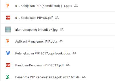 PIP BSM 2017