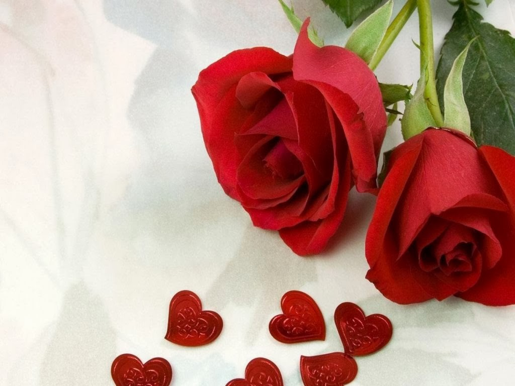 Red rose love - Pics of roses and hearts ...