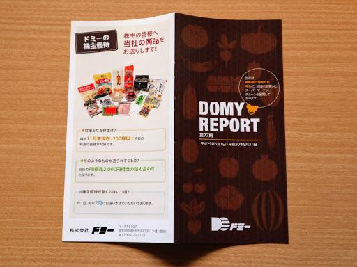 DOMY REPORT