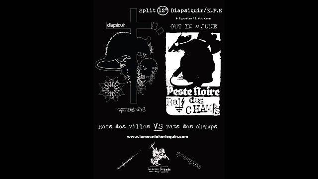 split peste noire diapsiquir rat des villes rat des champs black metal de france