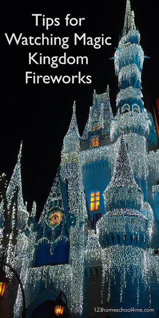 Tips for Watching Magic Kingdom Fireworks - lots of great tips for watching fireworks at magic kingdom in Orlando. GREAT IDEAS for your next family vacation