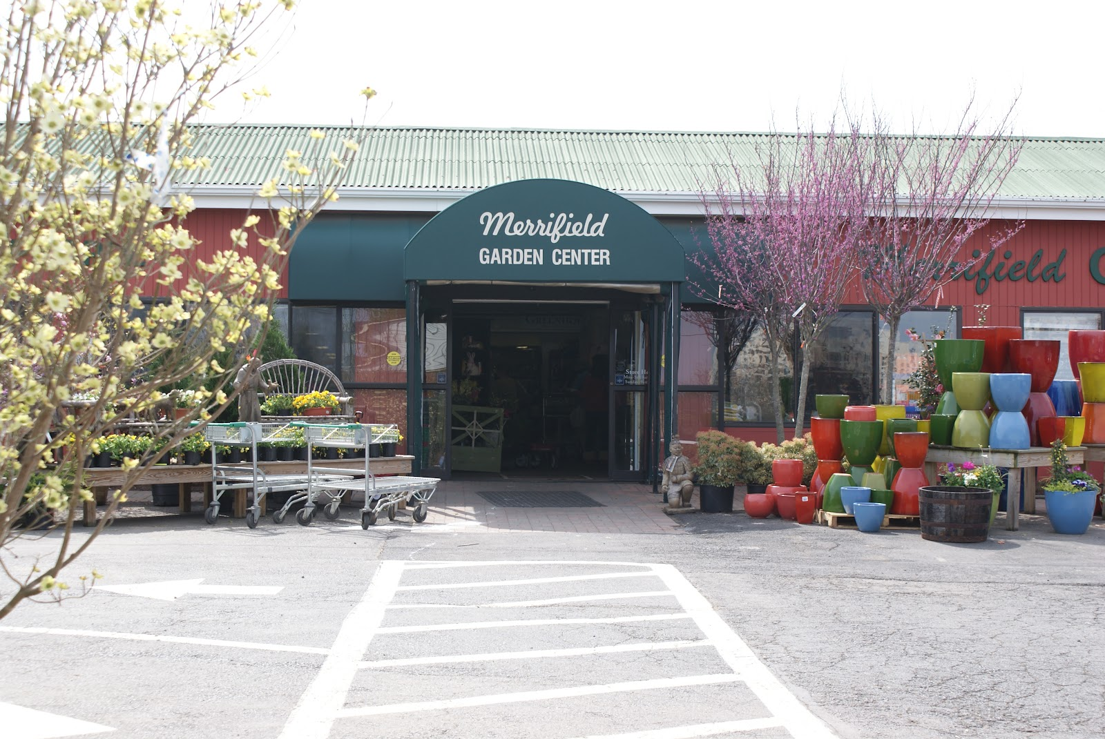 Garden Centre: Day By Day: Merrifield Garden Center