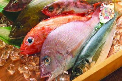 أغذية لتقوية الذاكرة - الاسماك الدهنية