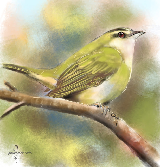 Red-eyed Vireo bird painting by Artmagenta